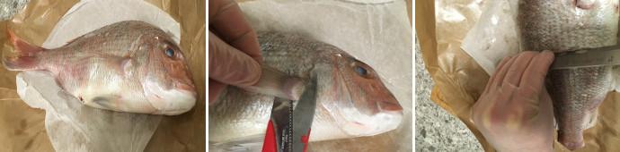 pesce in crosta di sale template3